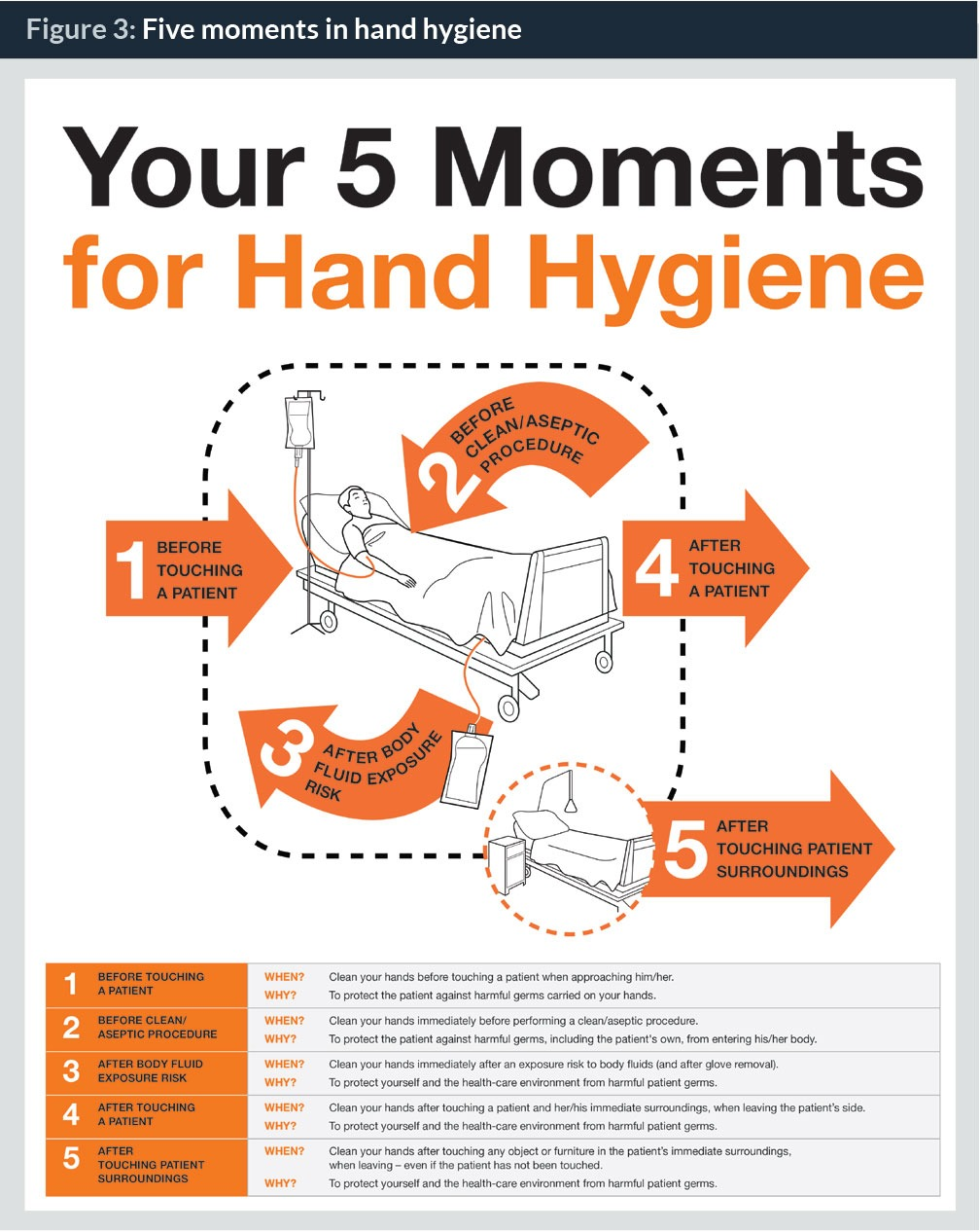 importance of hygiene infection prevention and Understand the importance of good personal hygiene in the prevention control of infection promote good health and to prevent illness there are various job duties but one is working very closely with the entire team of healthcare professionals.