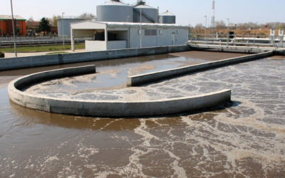 Antibiotics and resistance genes in wastewater treatment plants